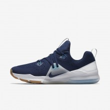 Nike Zoom Training Shoes For Men Blue/Platinum/White/Blue 922478-400