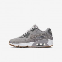 Nike Air Max 90 Lifestyle Shoes For Girls Grey/White/Light Brown 897987-004